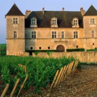 clos-de-vougeot-vineyard-vougeot-france-1-1600x1200-1